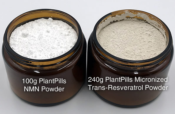 plantpills-large-glass-jars-2