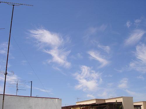 Sylphs over Seville