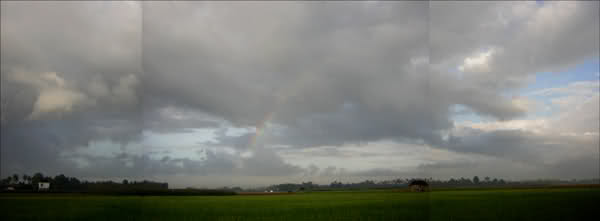 Rainbow at Dawn