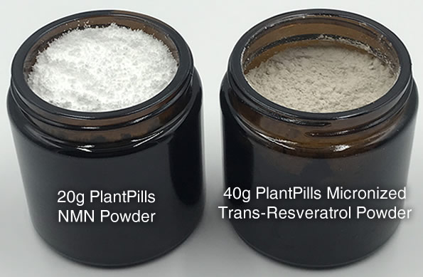plantpills-small-glass-jars-2